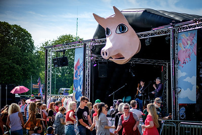 Flying Pig Stage - Strawberry Fair 2017