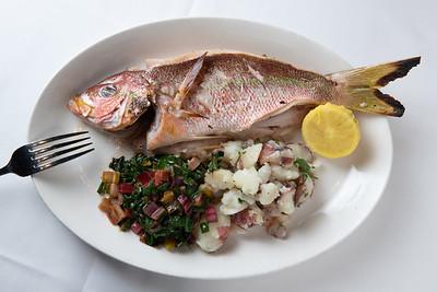 Unedited - Atlantic Fish