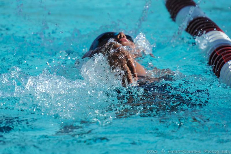 2016-06-29_HAC_SwimMeet_v_Dolphins@SkylineDE_026.jpg