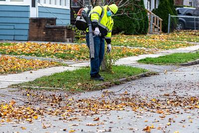 2020 Fall Loose Leaf Pick Up
