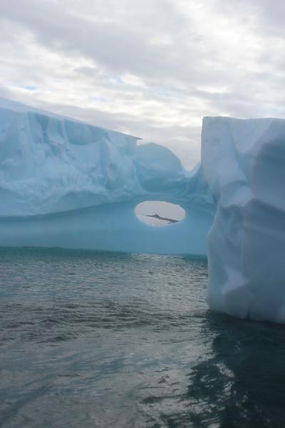 Antarctica 182.JPG