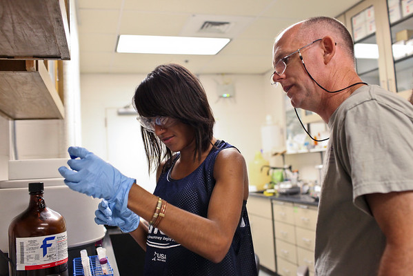 Weston Science Scholars Program