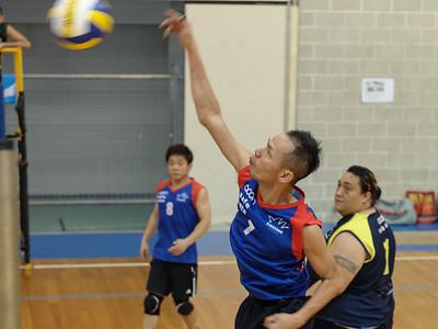 Social Volleyball