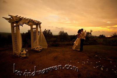 Wedding Sampler