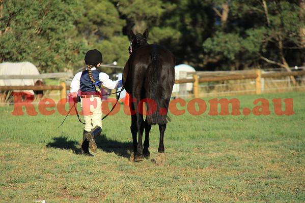 2012 04 14 EWA Interschools Showman 9-till-11-30