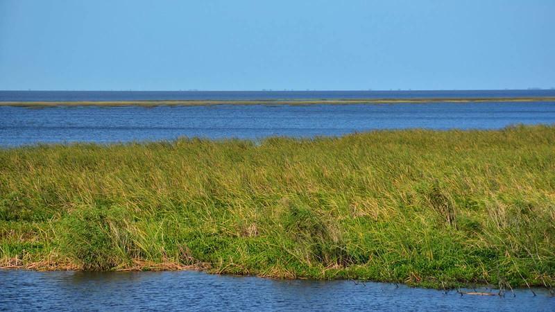 grassy waters Okeechobee