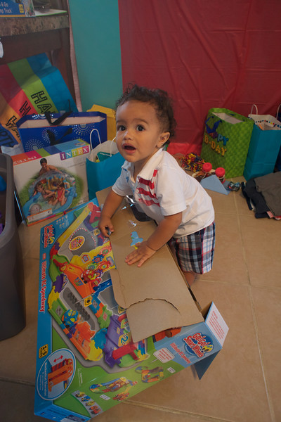 LINCOLN 1st BIRTHDAY PARTY_ 257.jpg