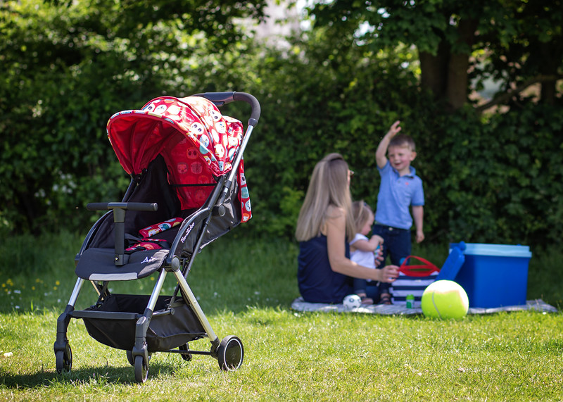 Familidoo_Air_Lifestyle_Pink_Rabbit_Pushchair_On_Grass_Picnic_In_Background.jpg