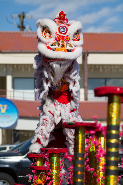 Pre Chinese New Year 2013 (22 of 24).jpg