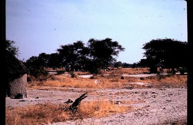 Africa 1991