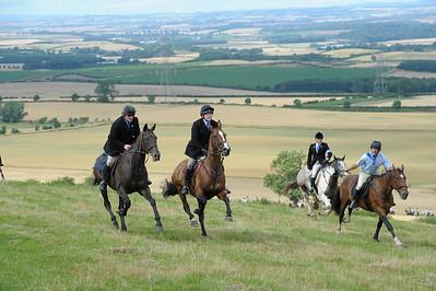 Flodden - Horses 2 (Branxton Hill)