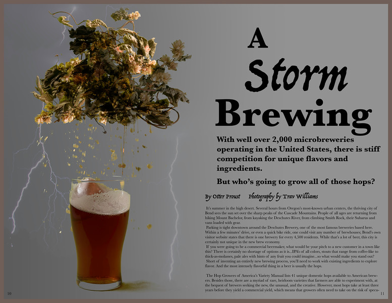 Storm Brewing.jpg