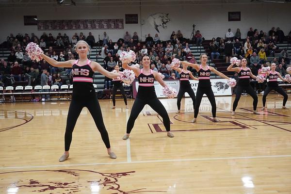 2020-01-31 Pink Panthers