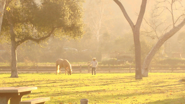 Griffith Park Horse Rentals is Film Friendly