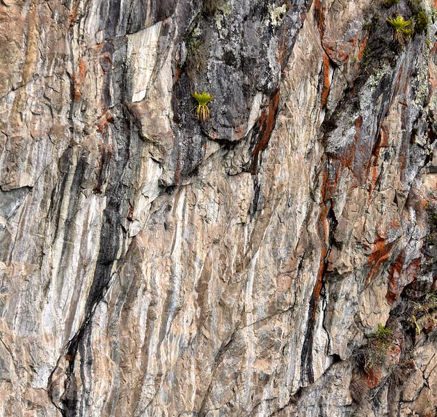 ECQ_6000-Rock Wall.jpg