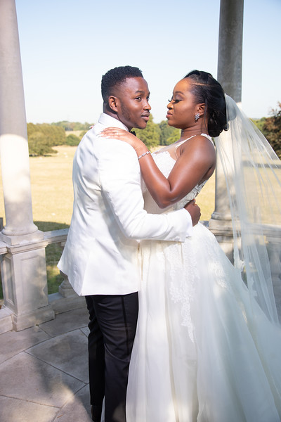 Moji and Taiwo - The Wedding