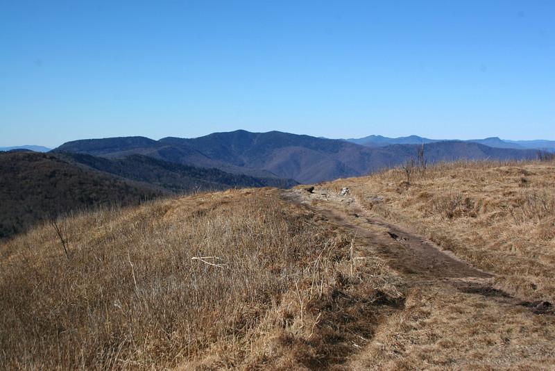 Art Loeb Trail -- 6,210'