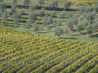 Tuscany 2003