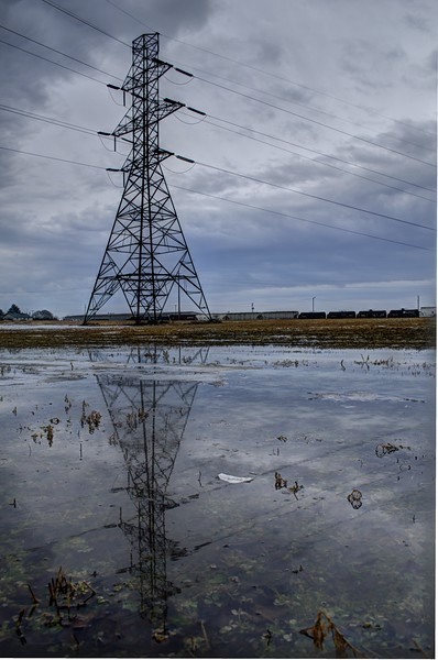 reflection - powerlines in a puddle.jpg