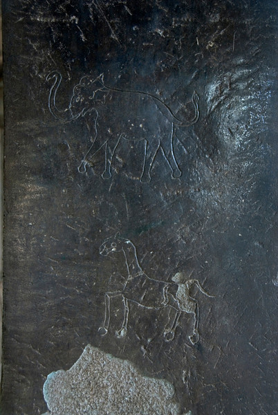 Horse and Elephant Etching at the Angkor Wat, Cambodia