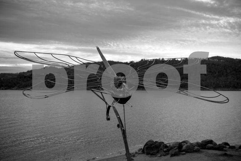 lake light n.jpg