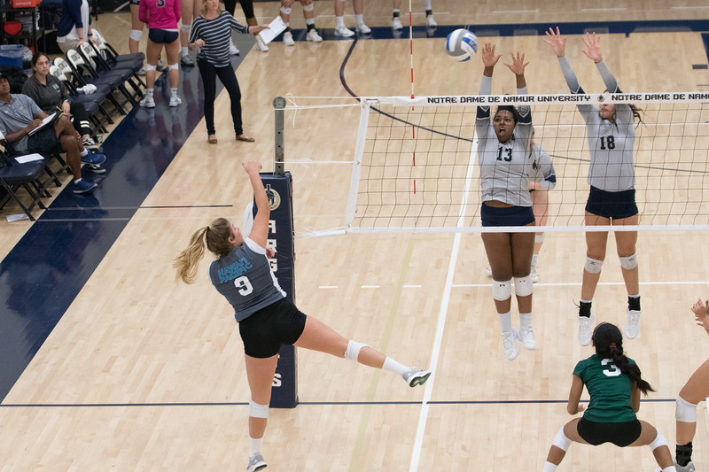 HPU Volleyball-92998.jpg