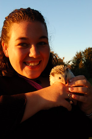 Stacey's Hedgehog