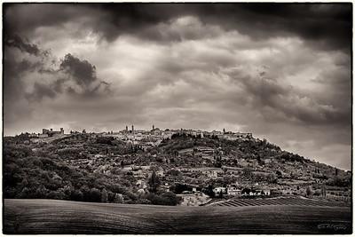 Montalcino - Siena, Italy 2015 (monochrome)