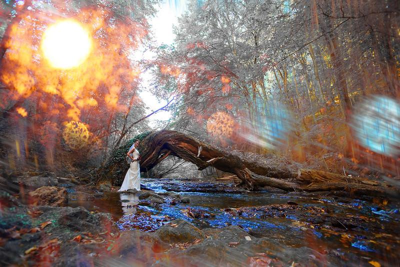 fotograf nunti Timisoara