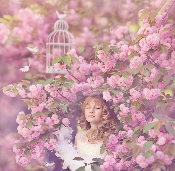 OliviaPinktreefb.jpg