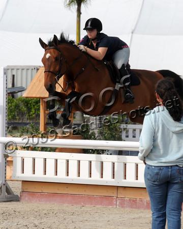 2010 Horse Show Season