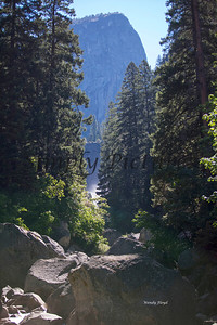 Yosemite035
