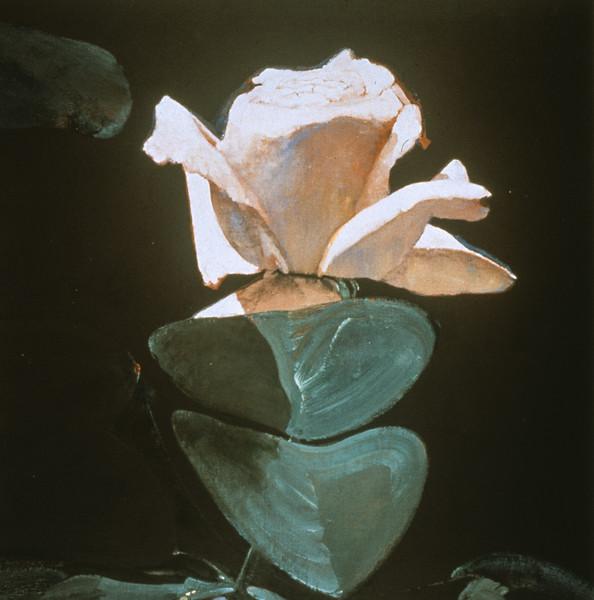 Eros Rose I     (Price: $2500.00)