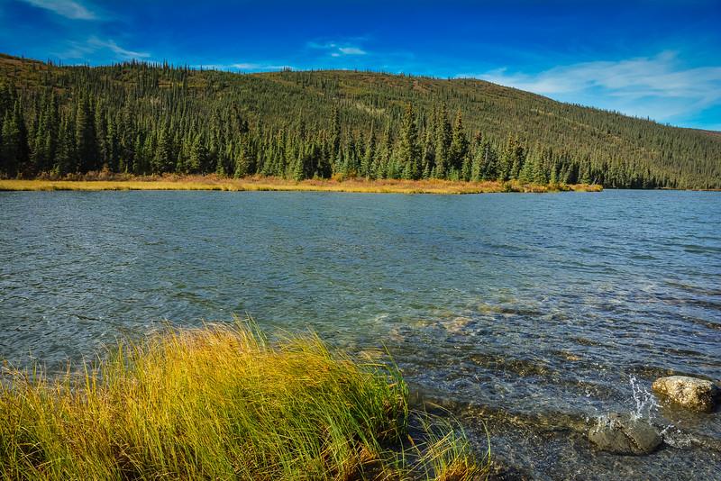 Denali-National-Park-128.jpg