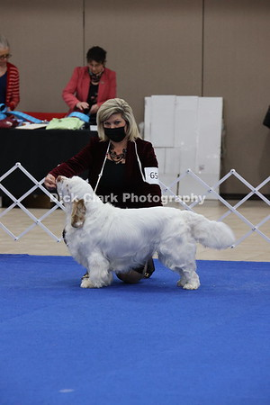 CSCA Regional Specialty Best of Breed part 2
