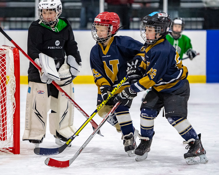 2019-02-03-Ryan-Naughton-Hockey-82.jpg
