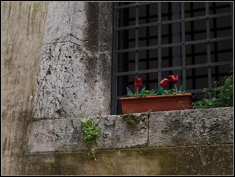 2010-05-Spoleto-256.jpg