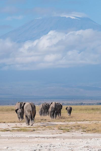 Jay Waltmunson Photography - Kenya 2019 - 142 - (DSCF3809).jpg
