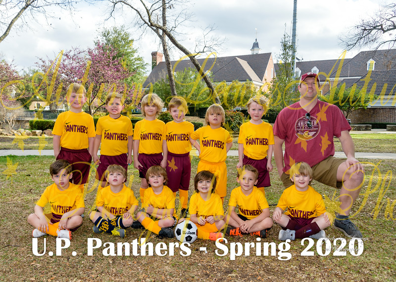 20200309 -#G2 PKB UP Panthers