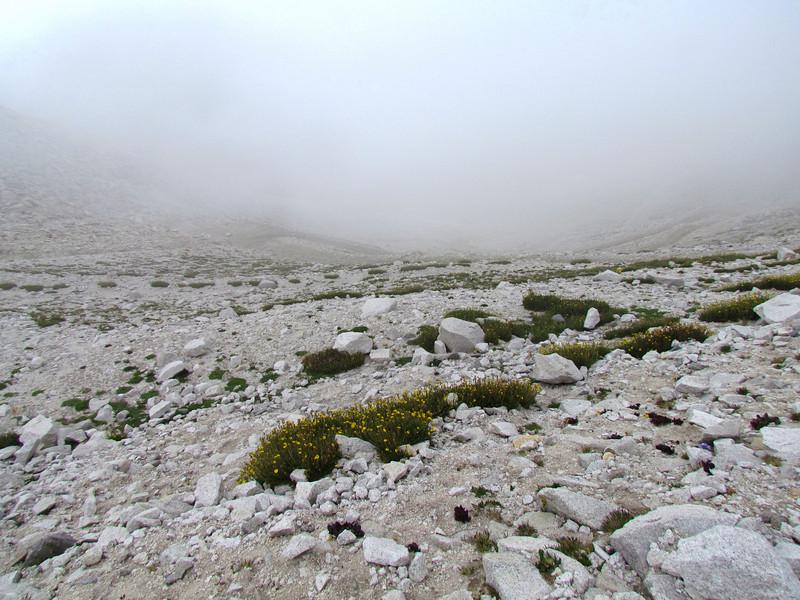 Mt Antero 7-26-2011 (183).JPG