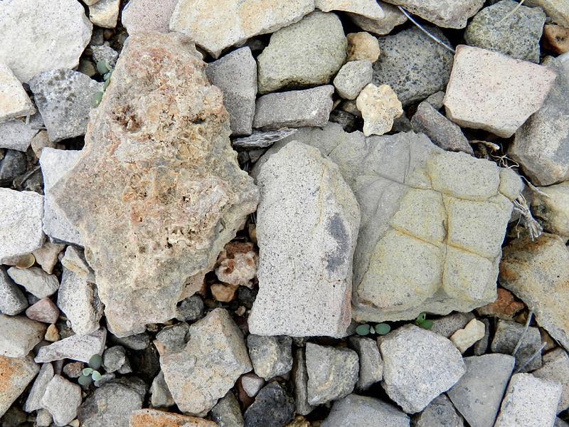 terlingua ranch 145 rocks.jpg