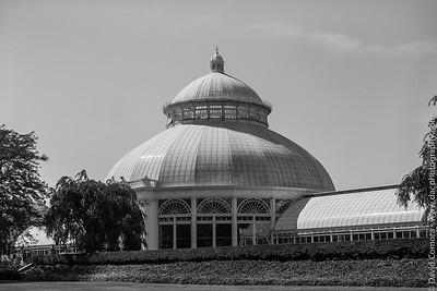 Bronx Botanical Garden 1