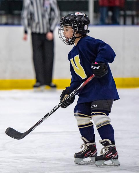 2019-02-04-Ryan-Naughton-Hockey-104.jpg
