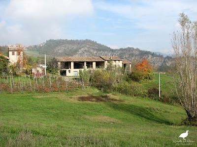 Ruino 3 Novembre 2005