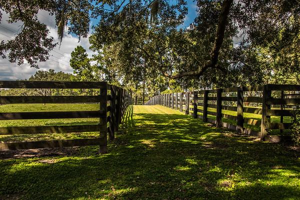 Ocala Horse Country
