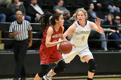 Basketball - LHS Girls 2018-19 - Reeds Spring (Full Res)