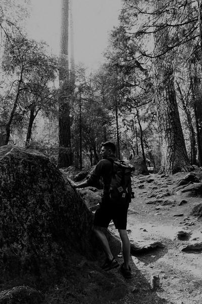 Forest_City_Photographs_Honeymoon_Califonia_San_francisco_Yosimite-158.jpg