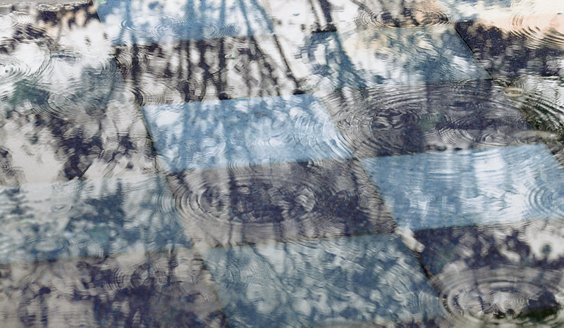 20111005_Nature_073.jpg