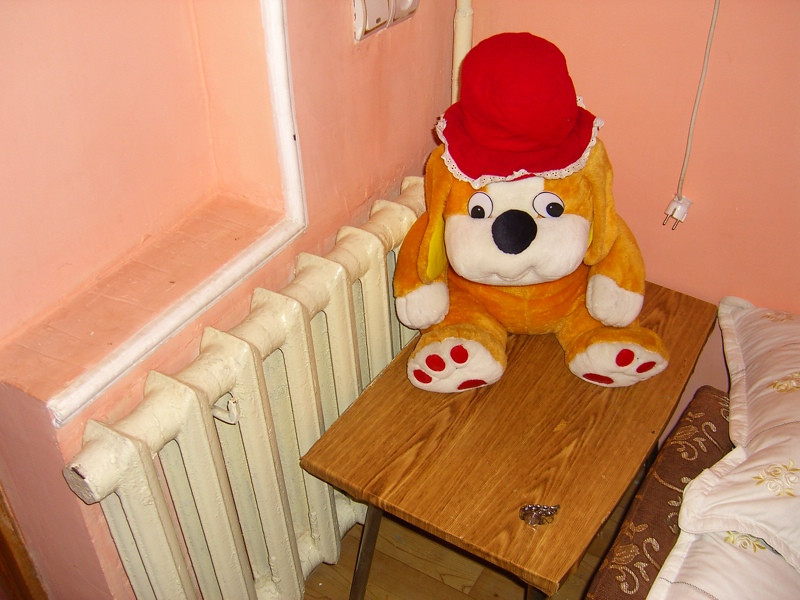Stuffed Animal at the Sketchy Hotel - Shymkent, Kazakhstan