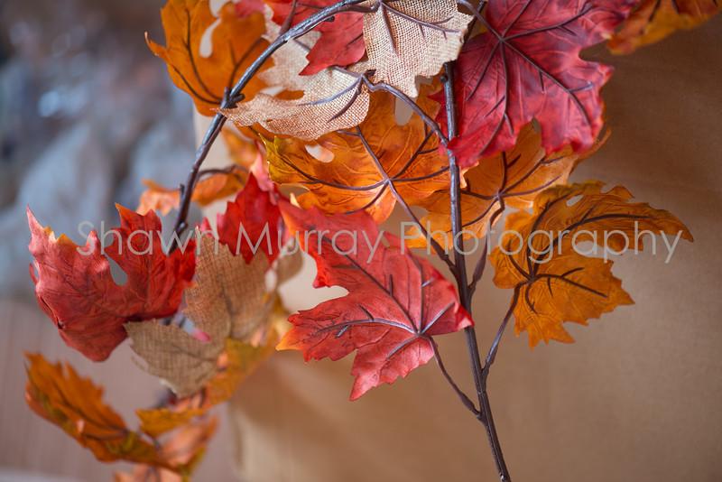 0296_Megan-Tony-Wedding_092317.jpg